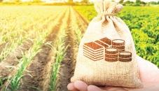 Loan arbitration board for farmers