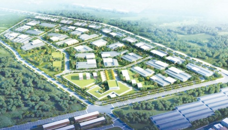 Bangabandhu Industrial City: A huge development initiative