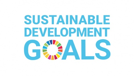 Sustainable development at local level