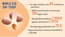 Egg: Cheap source of protein getting dearer