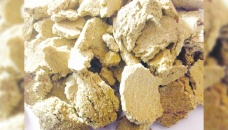 Government bans export of soybean meal