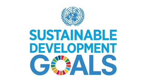 Sustainable Development Goals and the virus fallout