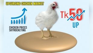 Farm chicken prices jump Tk50 in a month