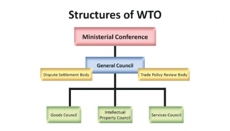 An overview of WTO
