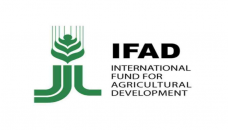 Food systems ignoring poor are bound to fail: IFAD