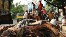 Rawhide wastage falls as prices increase