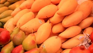 Health benefits of mangoes