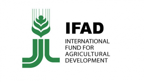 Food systems ignoring needs of poor doomed to fail:IFAD